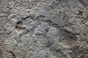 Una huella descubierta en un mosaico de 1.700 años en Israel, fotografiada el 13 de octubre de 2009 (IAA/AFP/Archivos   Nkik Davidov)
