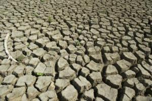 La sequía que afecta a Colombia el 31 de julio de 2014 en el departamento del Atlántico. (AFP/Archivos | Eitan Abramovich)