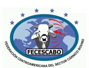 Logo federacion